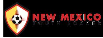 Image result for nmysa logo